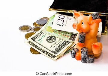 pig with coins and money
