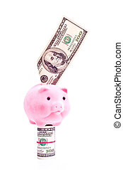 Pig with dollars