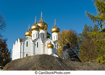 Pigeon sitting at stone with Yaroslavl Uspenski cathedral (Assumption cathedral, Dormition cathedral) on background