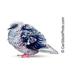 Pigeon bird isolated watercolor Vector. Colorful painted style illustrations