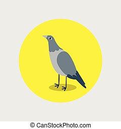 Pigeon flat cartoon in yellow circle. Bird character graphic