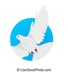 Pigeon Flat Design Vector Illustration
