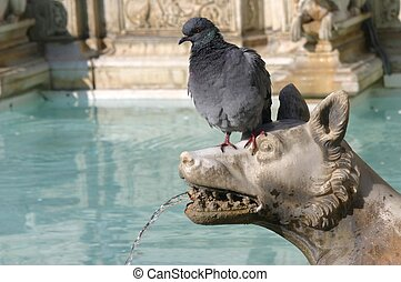 Pigeon on a sculpture