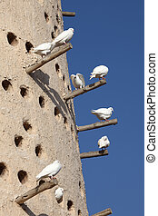Pigeon tower in Doha, Qatar Middle East