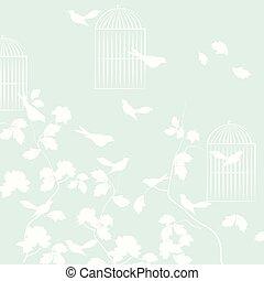 Pigeons birds background