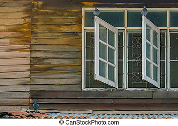 Pigeons on old wooden window of the former wooden house.