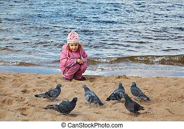 pigeons., peu, groupe, jour, eau, automne, bord, nourrit, assied, plage, girl