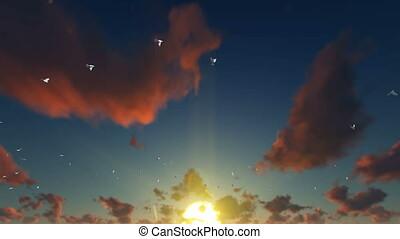 pigeons, voler, contre, beau, coucher soleil, 4k