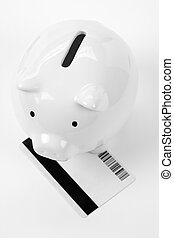 Piggy Bank and Credit Card