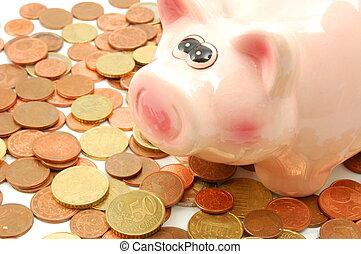 piggy bank and money