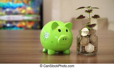 Piggy Bank and Planting Coin Tree - Planting Coin Tree with...