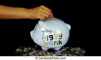 Piggy bank coin drop in black space, Piggy Bank Savings.