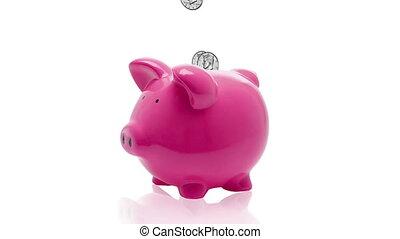 Piggy Bank - Coins falling into a pink piggy bank