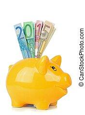 piggy bank, hos, banknotes euro