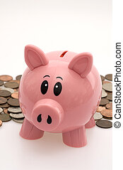 Piggy Bank in Front of Coins