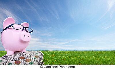 piggy bank , met, geld.
