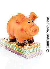piggy bank on banknotes