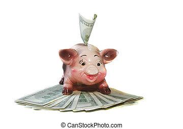 piggy bank on dollar bills over white