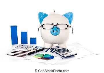 piggy bank, przy okularach, z, księgowość, paperwork