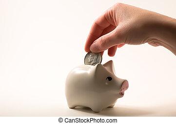 Piggy bank - Putting money in the piggy bank