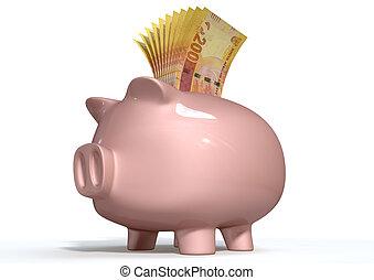 Piggy Bank Saving South African Rands