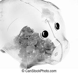 piggy bank - isolated piggy bank