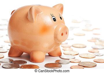 piggy bank - photo shot of piggy bank
