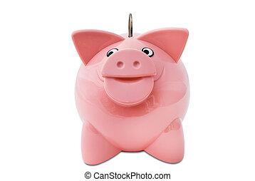 Piggy Bank with a coin