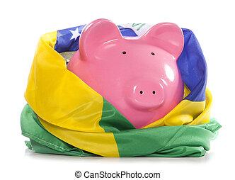 piggy bank with brazilian flag