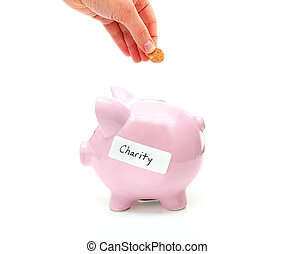 """piggy bank with """"charity"""" label and hand with penny"""