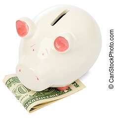 Piggy bank with dollars on white