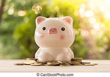 piggy bank with golden coins in nature background. account concept, business concept, finance concept, savings concept