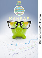 Piggy bank with US state flag on background - Kansas