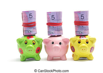 Piggy Banks and Dollar Notes