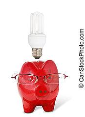 piggy-banque, à, lunettes, et, ampoule