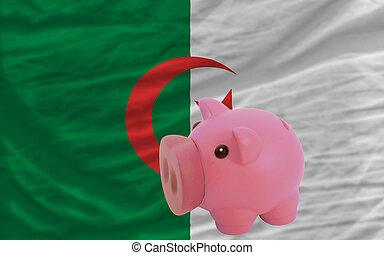 piggy rich bank and national flag of algeria