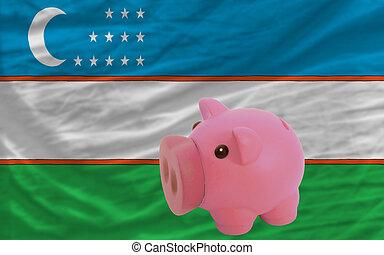 piggy rich bank and national flag of uzbekistan