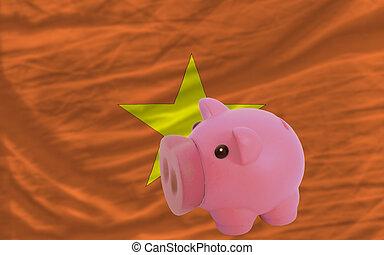 piggy rich bank and national flag of vietnam