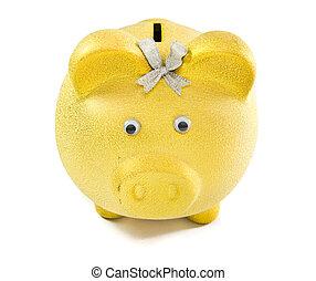 piggy, soldi, risparmio, moneta, maschio, bank., mettere, mano