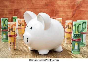 Piggybank Surrounded With Euro