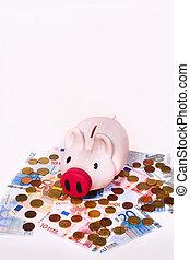 Piggybank with euros