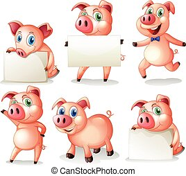 Pigs holding blank boards illustration