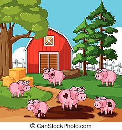Pigs in muddy puddles on the farm