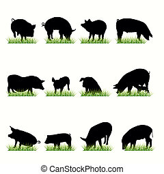 Pigs Silhouettes Set