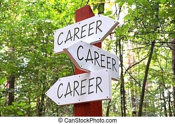 pijl, concept, carrière, wegwijzer, -, drie