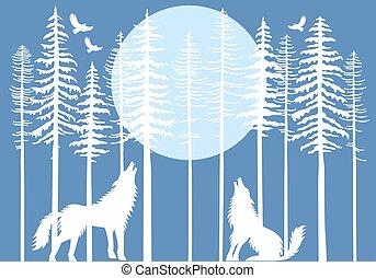 pijnboom, huilend, bos, vector, wolf