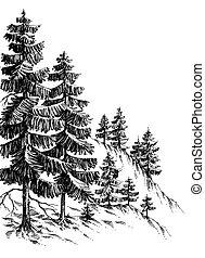 pijnboom woud, winter, berg landschap, tekening