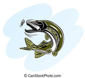 Pike attack bait - Vector illustration of a pike attacking...