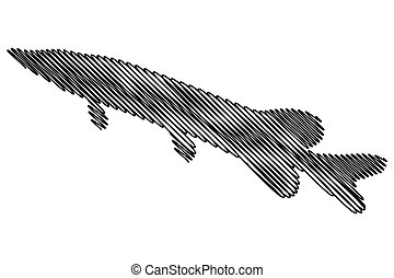 pike silhouette vector