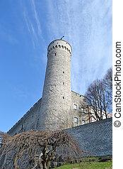 Pikk Hermann tower in Tallinn.